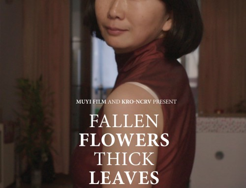 FALLEN FLOWERS THICK LEAVE 落下花长满叶 (2014-2016)